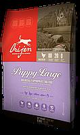 Orijen Puppy Large Breed для щенков крупных пород 6,8 кг.