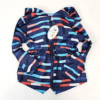 Детская куртка ветровка для мальчика синяя полосы 4-5 лет