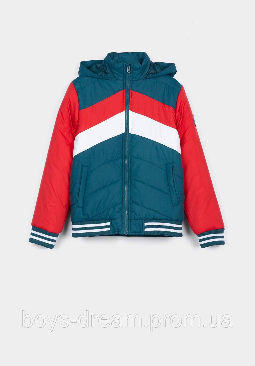 Яскрава демісезонна куртка  для хлопчика