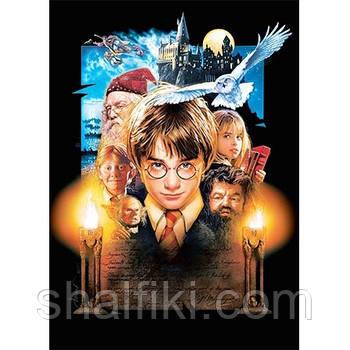 """""""Harry Potter / Гарри Поттер"""" магнит виниловый с рисунком"""