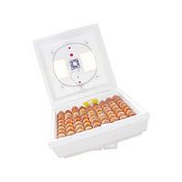 Инкубатор Квочка МИ-30-1-Э на 80 яиц цифровой с перекатом яиц (тепловой шнур)