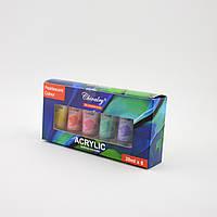 Акрилові фарби перламутрові в наборі 6 шт. Chivalry QSA0620A