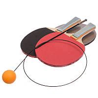 Набор для координации и тренировки по настольному теннису пинг-понгу Zelart 2 ракетки 2 мяча (160-40)