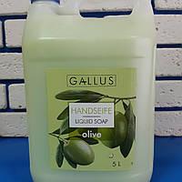 Жидкое мыло для рук Gallus Олива 5л