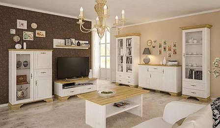 Витрина в гостиную из ДСП 2В2Д Белый Ирис Мебель Сервис, фото 2