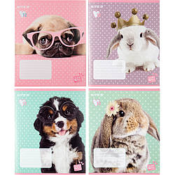 Тетрадь школьная Kite Studio Pets SP20-234, 12 листов, в линию