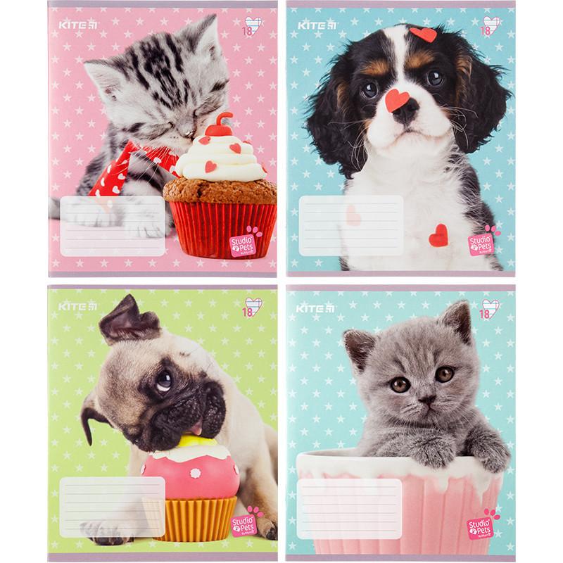 Тетрадь школьная Kite Studio Pets SP20-237 18 листов в линию