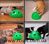 Игрушка для кошек - интерактивный игрушечный мяч Pop N' Play, фото 7