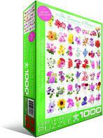 Пазл Eurographics Язык цветов, 1000 элементов