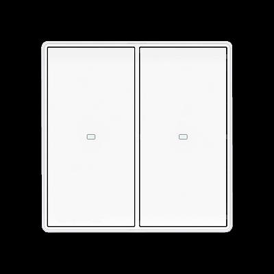 Двухканальный Smart переключатель DSZ1C2