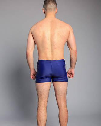 Мужские купальные шорты (арт. 2050246) 50-58 р., фото 2