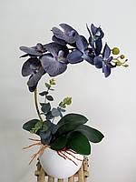 Орхидея черная латексная в вазоне