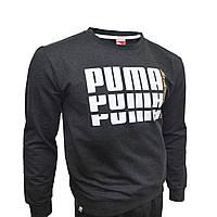 Спортивный мужской костюм Puma. Без капюшона серый весна-лето, повседневный костюм | AD sport