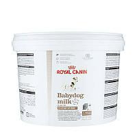 Заменитель молока Royal Canin Babydog Milk для щенков (2 кг)