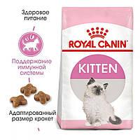 Сухой корм Royal Canin Kitten для котят до 12 месяцев. Здоровье пищеварительной системы (4 кг)
