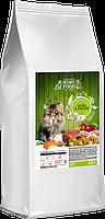 Сухой корм для котят  HOME FOOD ягненок с рисом,  3 кг