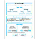 Схеми і таблиці Українська мова в початковій школі Авт: Баришполь С. Вид: Весна, фото 2