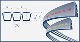Ремень 2НС-2550 (2C BP 2550) Harvest Belts (Польша) Z61150 John Deere, фото 2