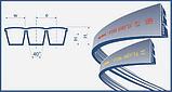 Ремень 3НВ-3970 (3B BP 3970) Harvest Belts (Польша) 1720205M3 Massey Ferguson, фото 2