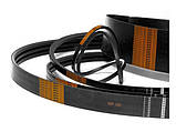 Ремень В(Б)-2430 (B 2430) Harvest Belts (Польша) D41934800 Massey Ferguson, фото 2