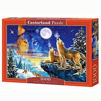 Пазлы Castorland Волки воют на луну 1000 эл (TOY-25291)