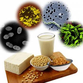 Пробіотики,ферменти, для ШКТ