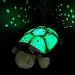 Черепаха «Звездное небо»