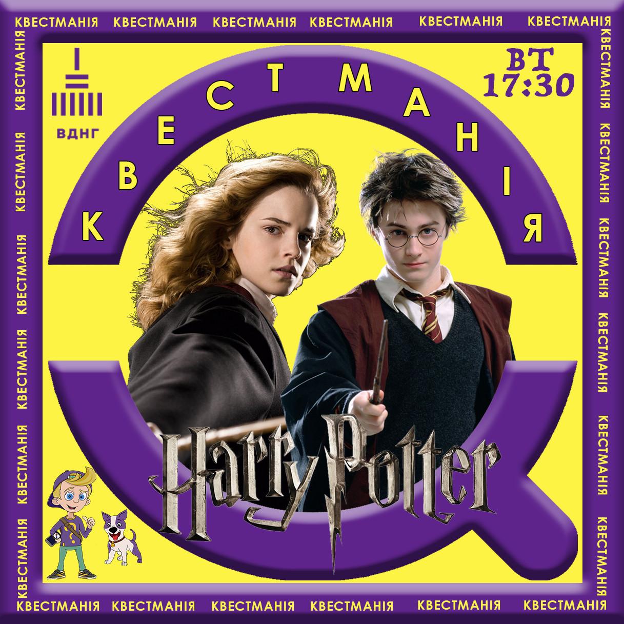 """Квест """"Гарри Поттер и Гермиона в поиске философского камня ..."""