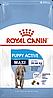 Корм Royal Canin Maxi Junior Active, для щенков крупных пород, 15 кг