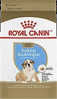 Корм Royal Canin Bulldog Junior, для цуценят Бульдога до 12 місяців, 12 кг