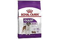 Корм Royal Canin Giant Adult, для дорослих собак гігантських порід, 15 кг