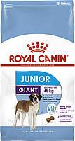 Корм Royal Canin Giant Junior, для щенков гигантских пород, 15 кг