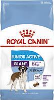 Корм Royal Canin Giant Junior Active, для щенков гигантских пород, 15 кг