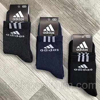 Шкарпетки чоловічі спортивні махрові х/б Adidas, Athletic Sports, розмір 41-44, середні, асорті, 09902