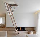 Сходи на горище Altavilla Чердачные лестницы 120х90, TermoPlus 46 mm., Faggio (Бук), фото 3
