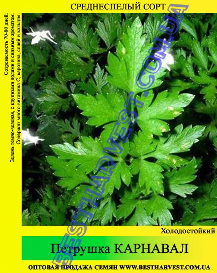 Семена петрушки «Карнавал» 0.5 кг