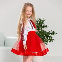 Вышитый костюм на девочку з фатиновой юбкой