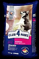 Сухой корм для щенков с курицей 14 кг CLUB 4 PAWS Клуб 4 Лапы