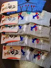 Житомир шкарпетки дитячі сітка р. 16 (Хлопчик)