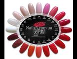 Акция- 4 гель-лака PNB  на выбор + Remover gel polish Adore 150ml в подарок!