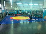 Борцовский (спортивный) мат для борьбы, дзюдо OSPORT 1м х 2м толщина 3см (FI-0002-30), фото 6