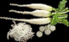 Семена редьки весовые