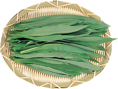 Семена щавеля весовые