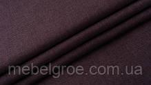 violet_14.jpg