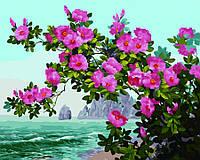 Алмазная картина-раскраска 40x50 Весна на побережье, Rainbow Art (GZS1070)