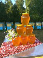 Мёд натуральный лесной