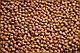 Сухий корм з куркою для кошенят 5 кг CLUB 4 PAWS Клуб 4 Лапи, фото 2