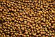 Сухой корм 4 в 1 для кошек, живущих в помещении 5 кг CLUB 4 PAWS Клуб 4 Лапы, фото 2