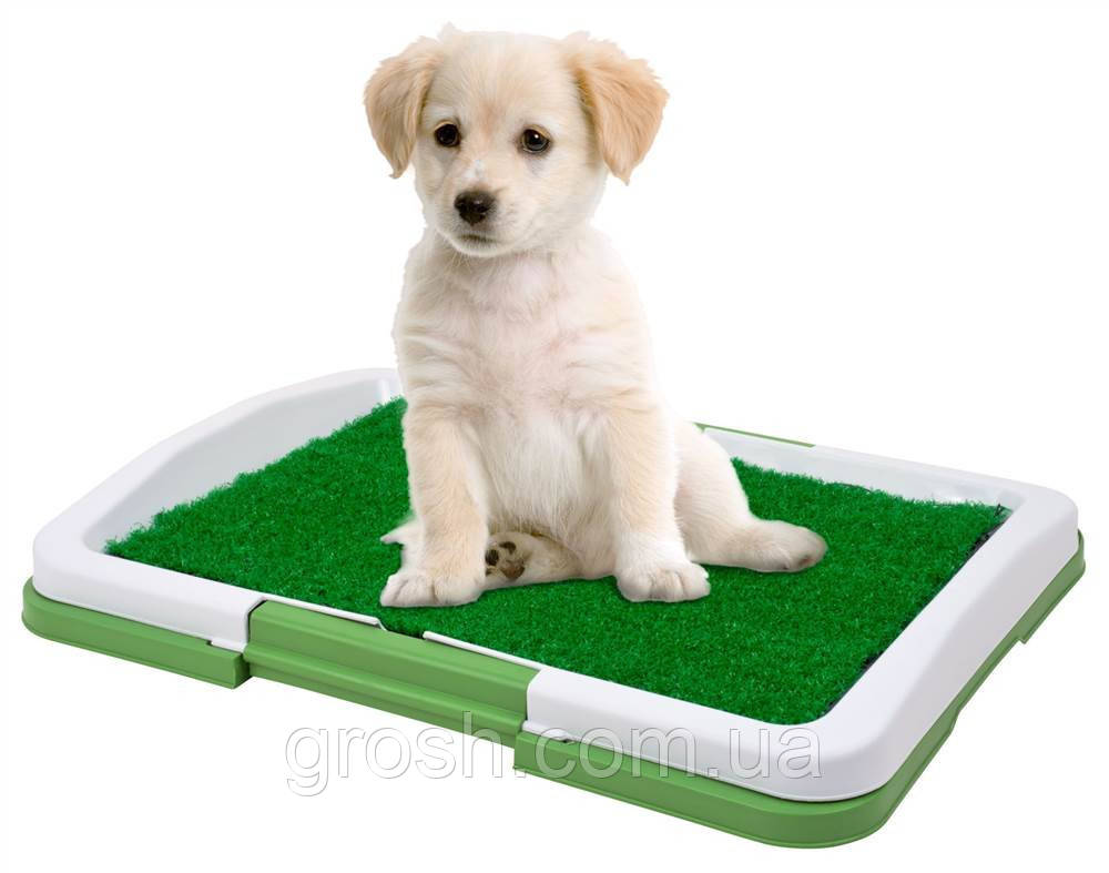 Лоток для собак Puppy Potty Pad ST201