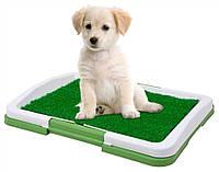 Лоток для собак Puppy Potty Pad ST201, фото 1